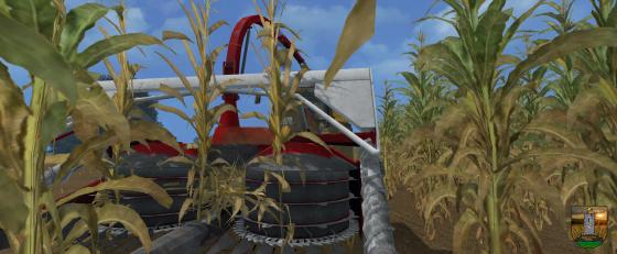 LS 15 - Allein im Mais