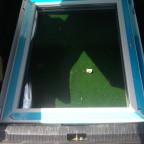 Das erste neue Fenster